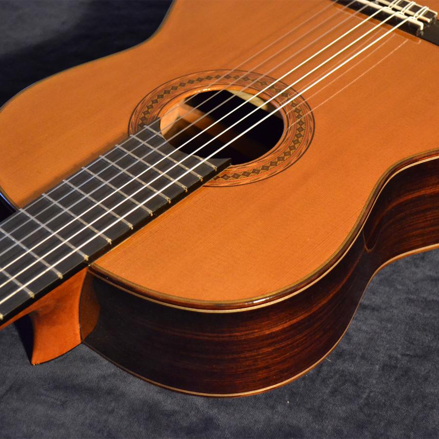 Hauser Gitarren